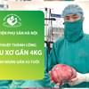 Phẫu thuật thành công khối u xơ tử cung gần 4kg cho bệnh nhân 43 tuổi